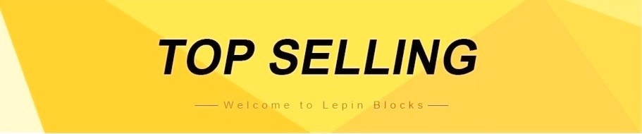 lepin best selling banner
